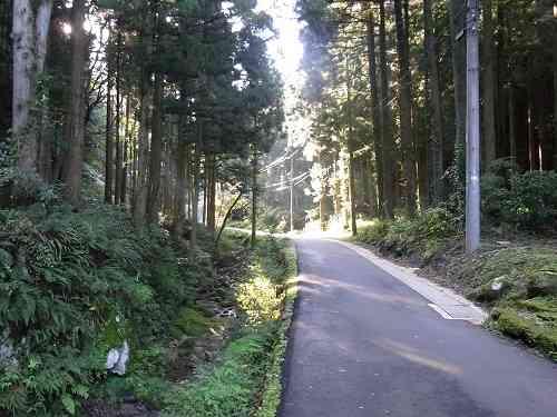 銀山地区へ山道
